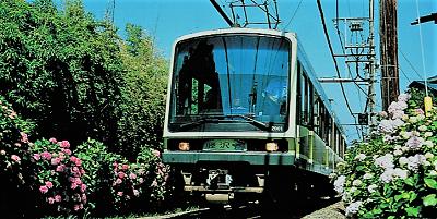 アジサイ電車444.png